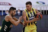 E.Ulanovas Graikiją paliks pralaimėjęs (Euroleague.net)