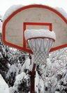 krepsys su sniegu